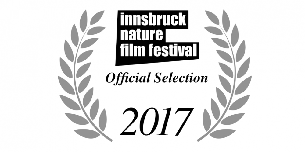 INFF 2017 – Shortlists
