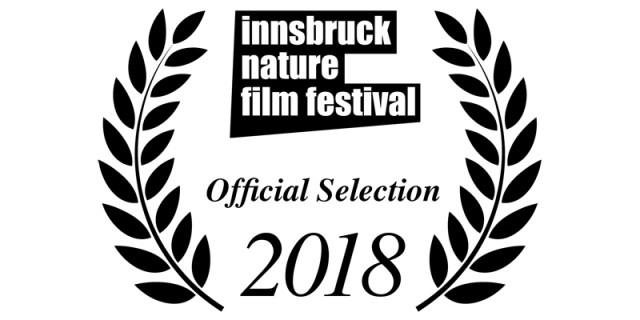 2018 INFF – Shortlist