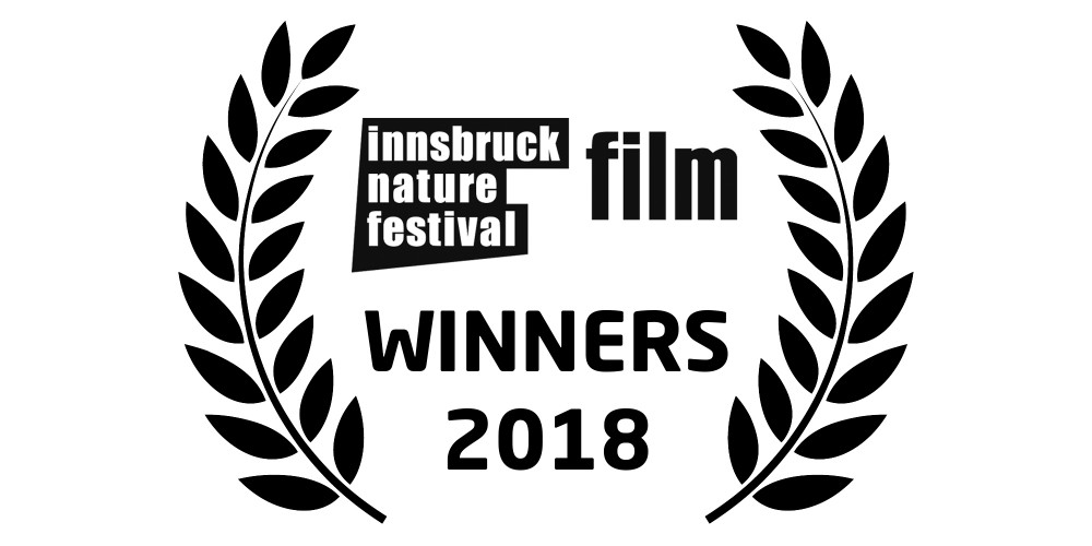 2018 INFF – THE WINNERS