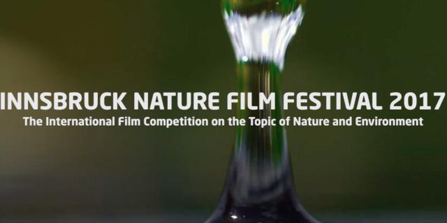 INFF 2017 – Trailer