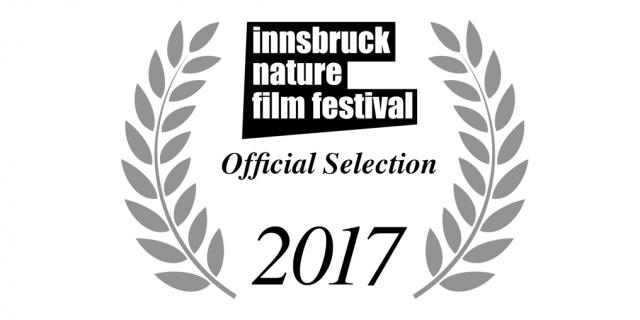INFF 2017 – Shortlists